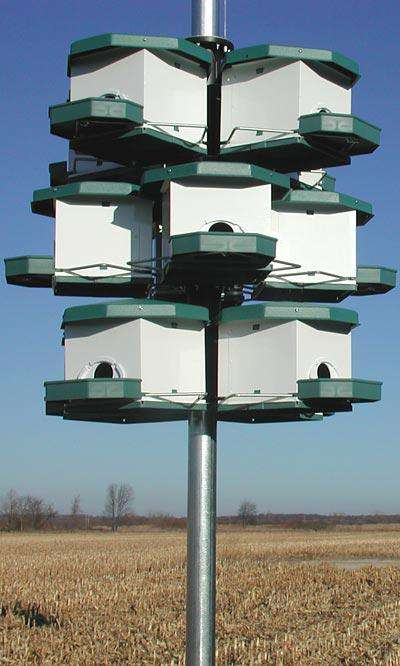 Heritage Farms Quad Pod Purple Martin House, 1 level? - World of Birdhouses