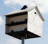 S&K Heavenly Haven Purple Martin House, 10 Room🚛
