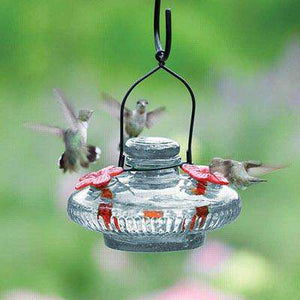 Parasol Bloom Hummingbird Feeder,  16 oz - World of Birdhouses