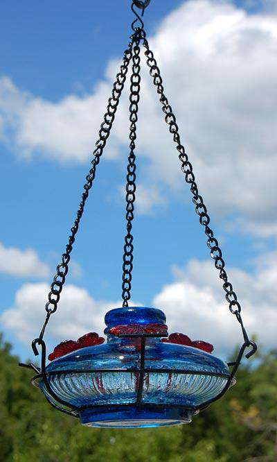 Parasol Bloom Hummingbird Feeder with Perch, 16 oz. - World of Birdhouses