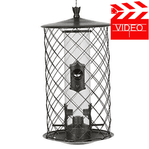 Perky-Pet The Preserve Wild Bird Feeder