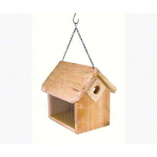 Songbird Essentials Hanging Bluebird Feeder