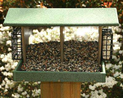 Songbird Essentials Large Double Hopper Seed and Suet Feeder♻️🚛