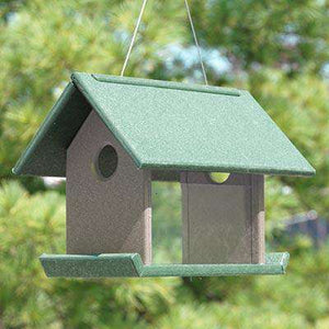Songbird Essentials Mealworm Feeder, Green and Brown - World of Birdhouses