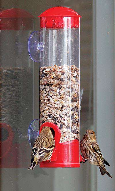 Stokes Window Seed Bird Feeder - World of Birdhouses