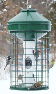 Vari-Crafts Caged Avian Mixed Seed Bird Feeder? - World of Birdhouses