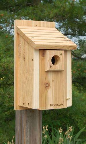 Woodlink Traditional Bluebird House🚛 - World of Birdhouses