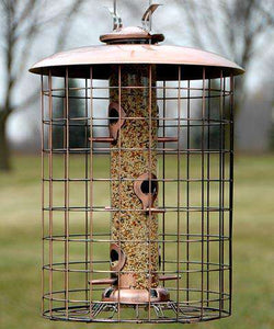 Woodlink Squirrel-Resistant Brushed Copper Seed Tube Feeder🚛 - World of Birdhouses