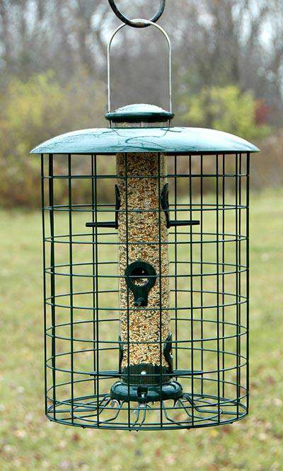Woodlink Caged Seed Tube Bird Feeder🚛 - World of Birdhouses