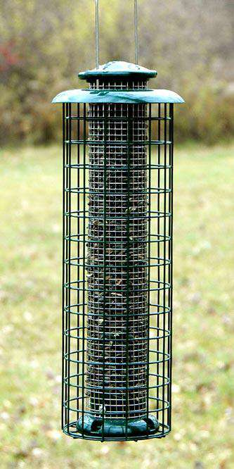 Woodlink Caged Screen Tube Bird Feeder🚛 - World of Birdhouses