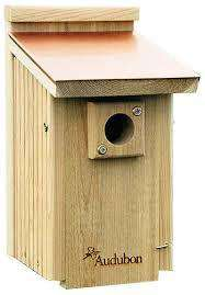Audubon Woodlink Coppertop Bluebird House