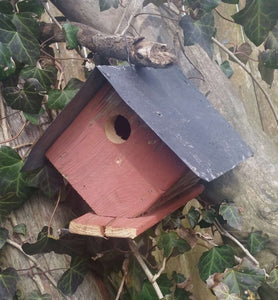 Wellsville Wren House - World of Birdhouses