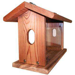 Stovall Wood Bluebird Feeder With Chain