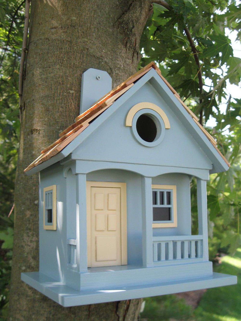 Pacific Grove Birdhouse Blue/Yellow🚛