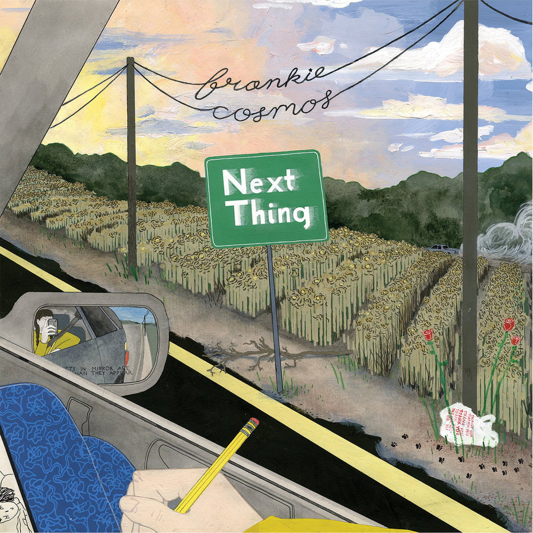 frankie-cosmos-next-thing-vinyl