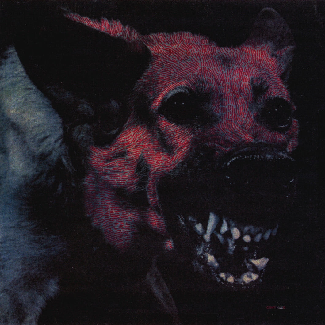 protomartyr-under-color-of-official-light-vinyl