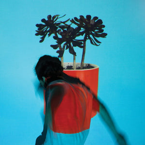 local natives sunlit youth limited edition vinyl