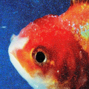 vince staples big fish theory limited edition vinyl