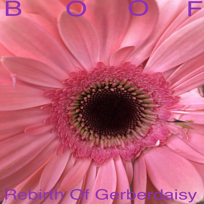 Boof - Rebirth of Gerberdaisy vinyl