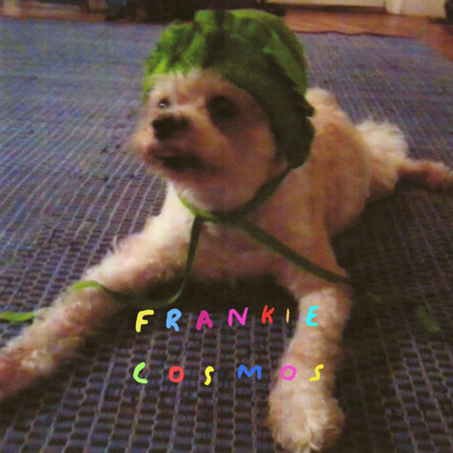 Frankie Cosmos - Zentropy limited edition vinyl
