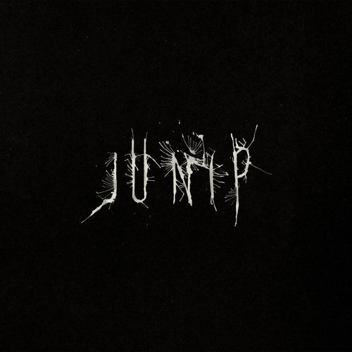 Junip – Junip limited edition vinyl
