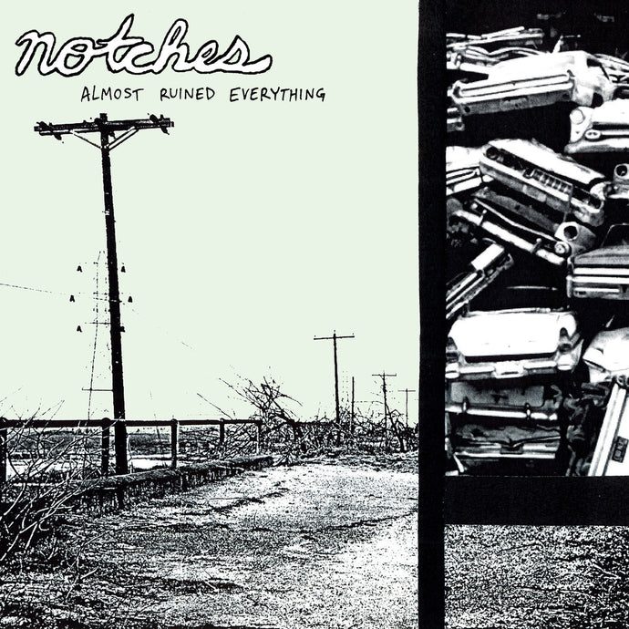 Notches - Almost Ruined Everything vinyl