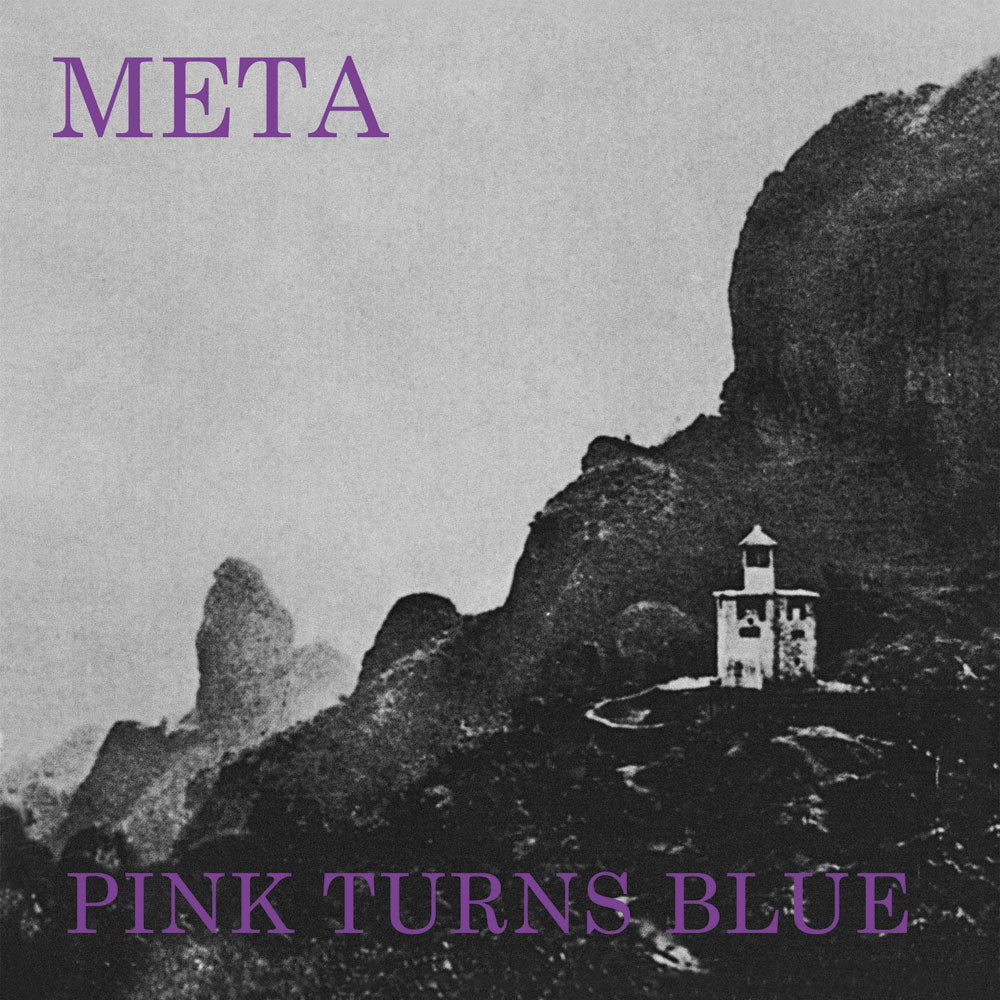 Pink Turns Blue - Meta limited edition vinyl
