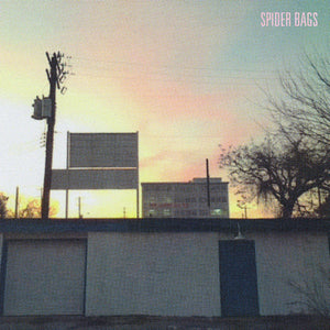 Spider Bags Someday Everything Will Be Fine vinyl