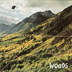 WOODS - SONGS OF SHAME VINYL