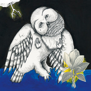 SONGS: OHIA - THE MAGNOLIA ELECTRIC CO VINYL (2LP)
