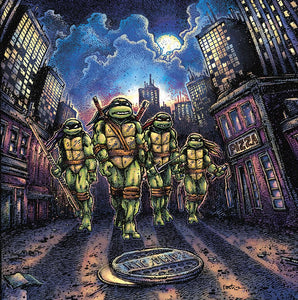 Teenage Mutant Ninja Turtles limited edition vinyl