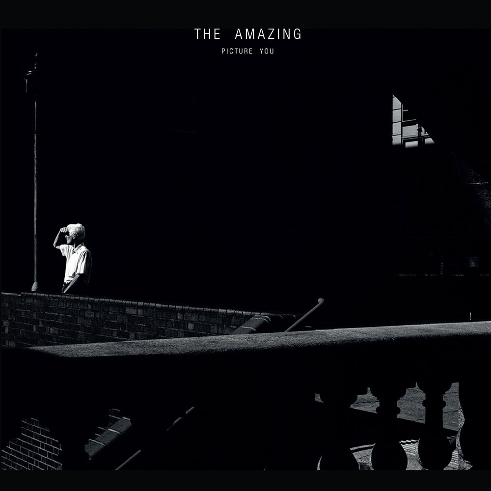 THE AMAZING - PICTURE YOU VINYL (2LP)