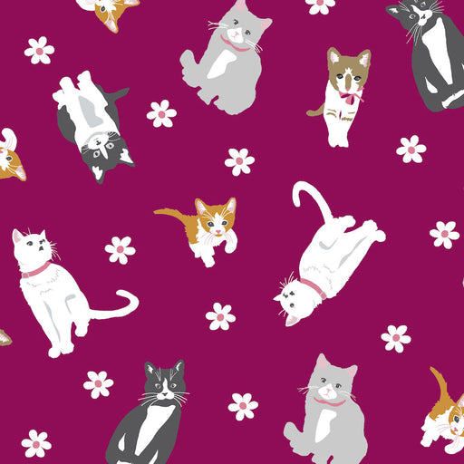 Cattitude - Tossed Cats 4065-85 Burgundy