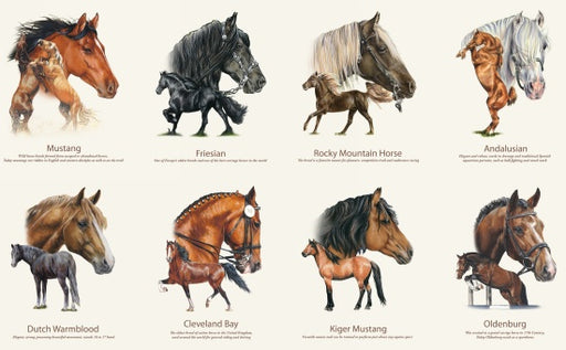 Horse Breeds Panel 7600-Cream