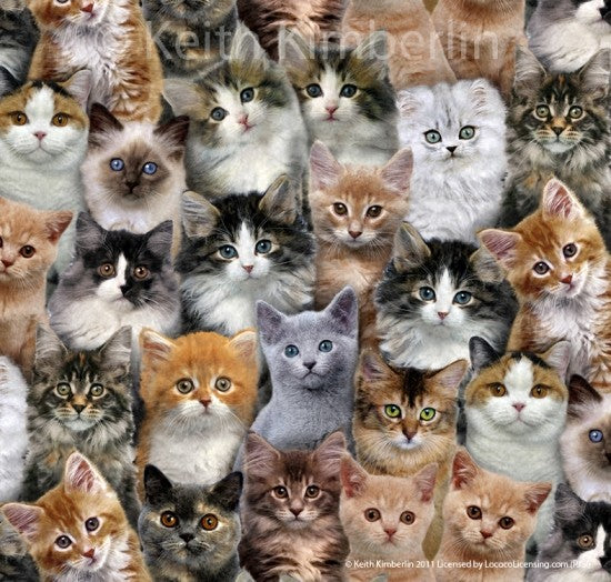 Adorable Pets Cats 3802-Multi