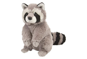 Raccoon Plush, 12""