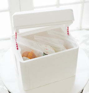 Mini Cooler Box