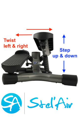 Mini Twister Stepper TS-365