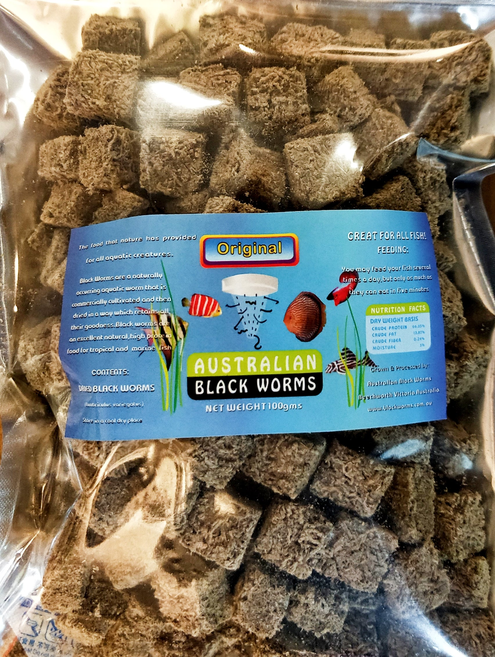 Australian Black Worms - Original