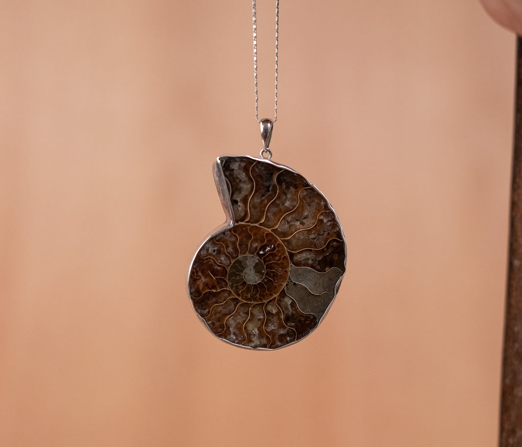 Nautilus Fossil Pendant - TOCO MADERA - Handcraft shoe from Mexico - Handmade shoe
