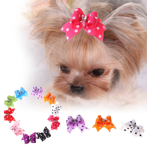 10pcs/Set Pet Cat Dog Small Puppy Pet Dog Rhinestone Hairpin Hair Bow Rubber Bands Grooming for Small dogs & cat puppys 4*4cm