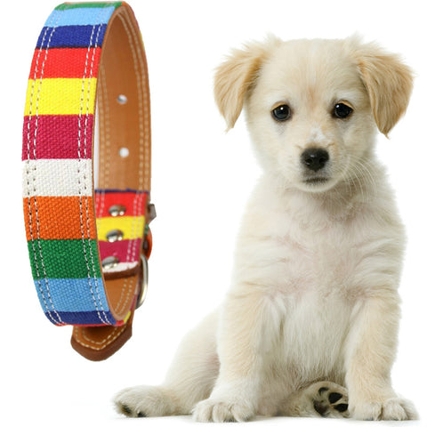 Adjustable Pet Dog collar Rainbow Collar For Large Dog Leather Plain collar for big small dog Dropshipping