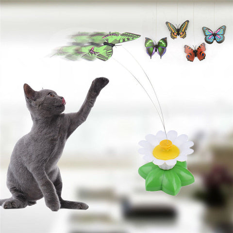 Intelligence trainning Electric rotating colorful butterfly funny dog cat toys pet birds seat zero toy cat Kitten dog Cats  1pcs