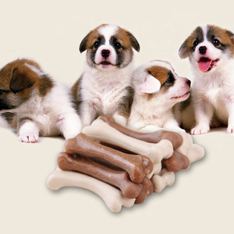 6pcs wholesale Dog Teething Aid Toys Pet Puppy Dental Chews Bone Natural Large Smart Bones Dog Toys Bite Resistant