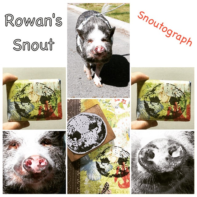 Pet Autogragh (pawtograph) Custom Stamp