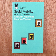Social Mobility And Its Enemies