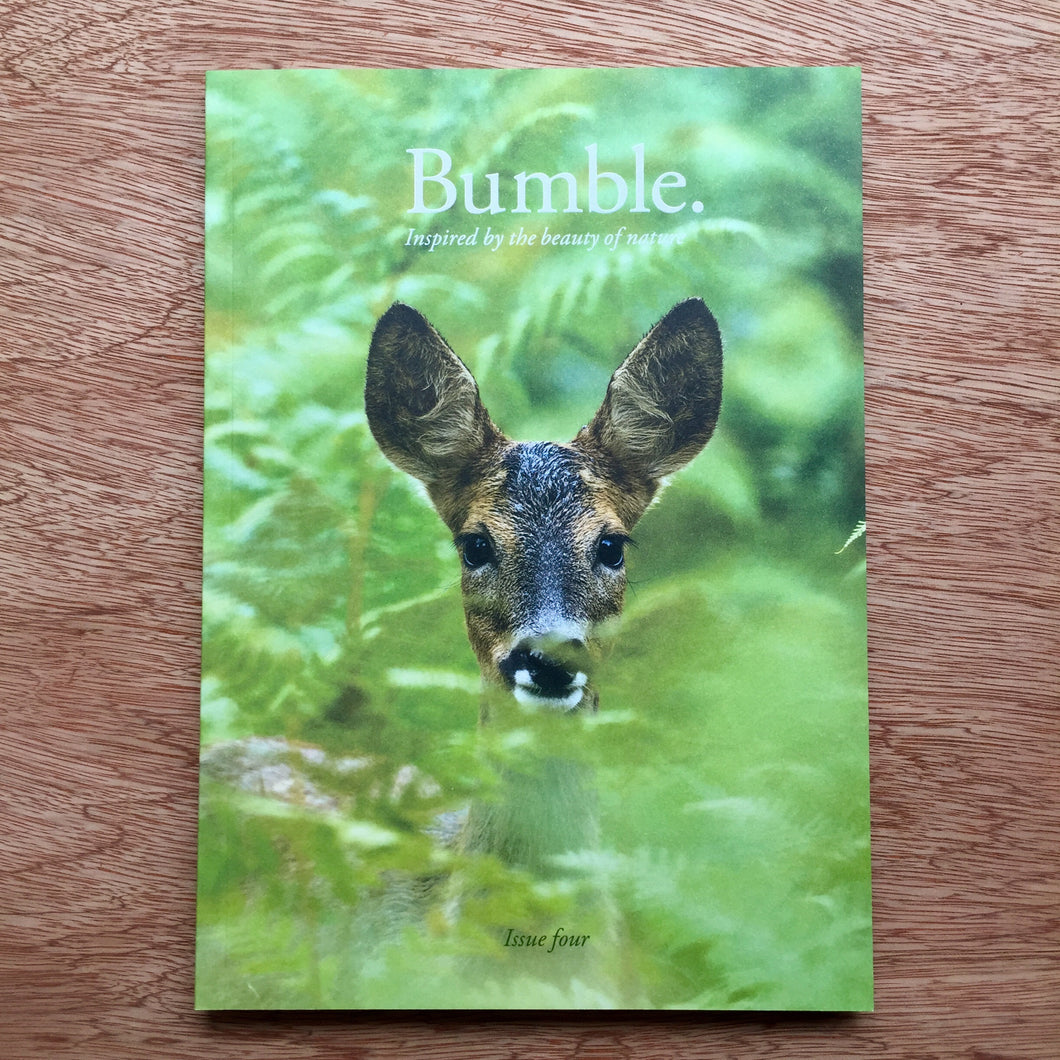 Bumble Issue 4