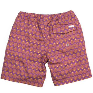 Dickson Boys Provence Swim Shorts