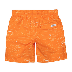 Dickson Brand Shark Men's Swim Shorts