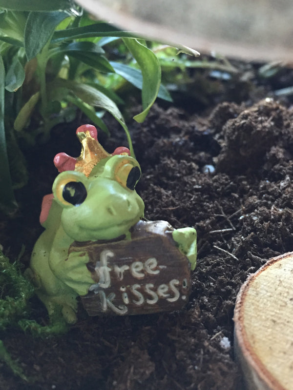 Storytime & Fairy Gardens - May 29th